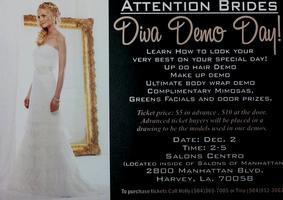 Diva Demo Day