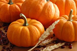 Family Weekend: Fall Festival at Clover Park