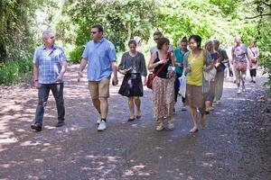 NetWALKING for Professionals who Want Fresh Air and Fresh Co...