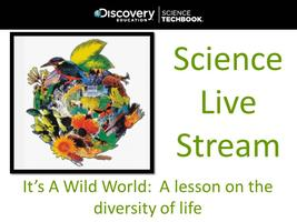 Oct. '14 Science Live Stream: It's A Wild World