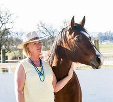 "Kathy Sidjakov, Animal Teacher of ""Animal Stars Dog Training"" logo"