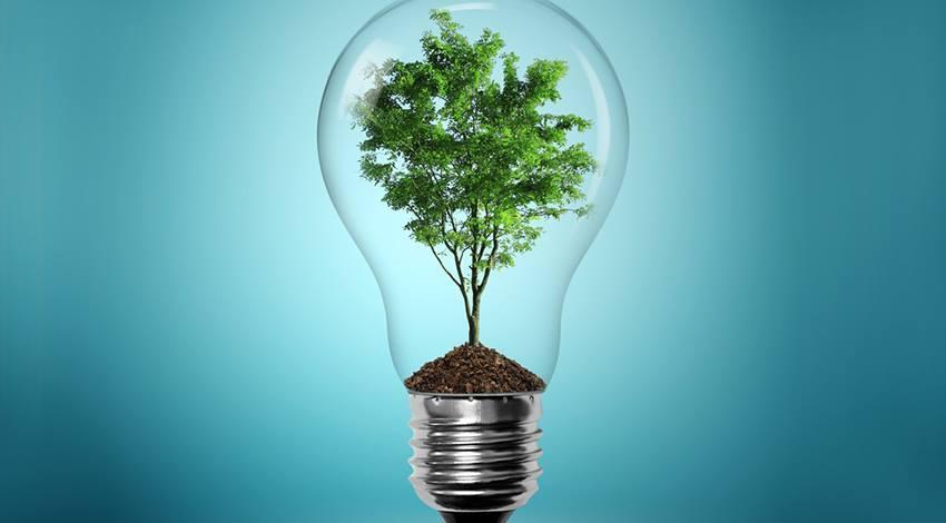 Social Entrepreneurship for a Better World Winter Spring 2020