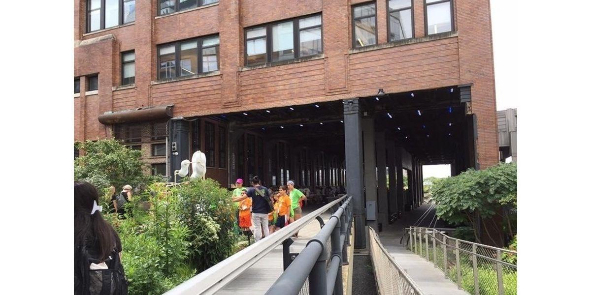High Line & Hudson Yards Walking Tour (12-02-2020 starts at 2:00 PM)
