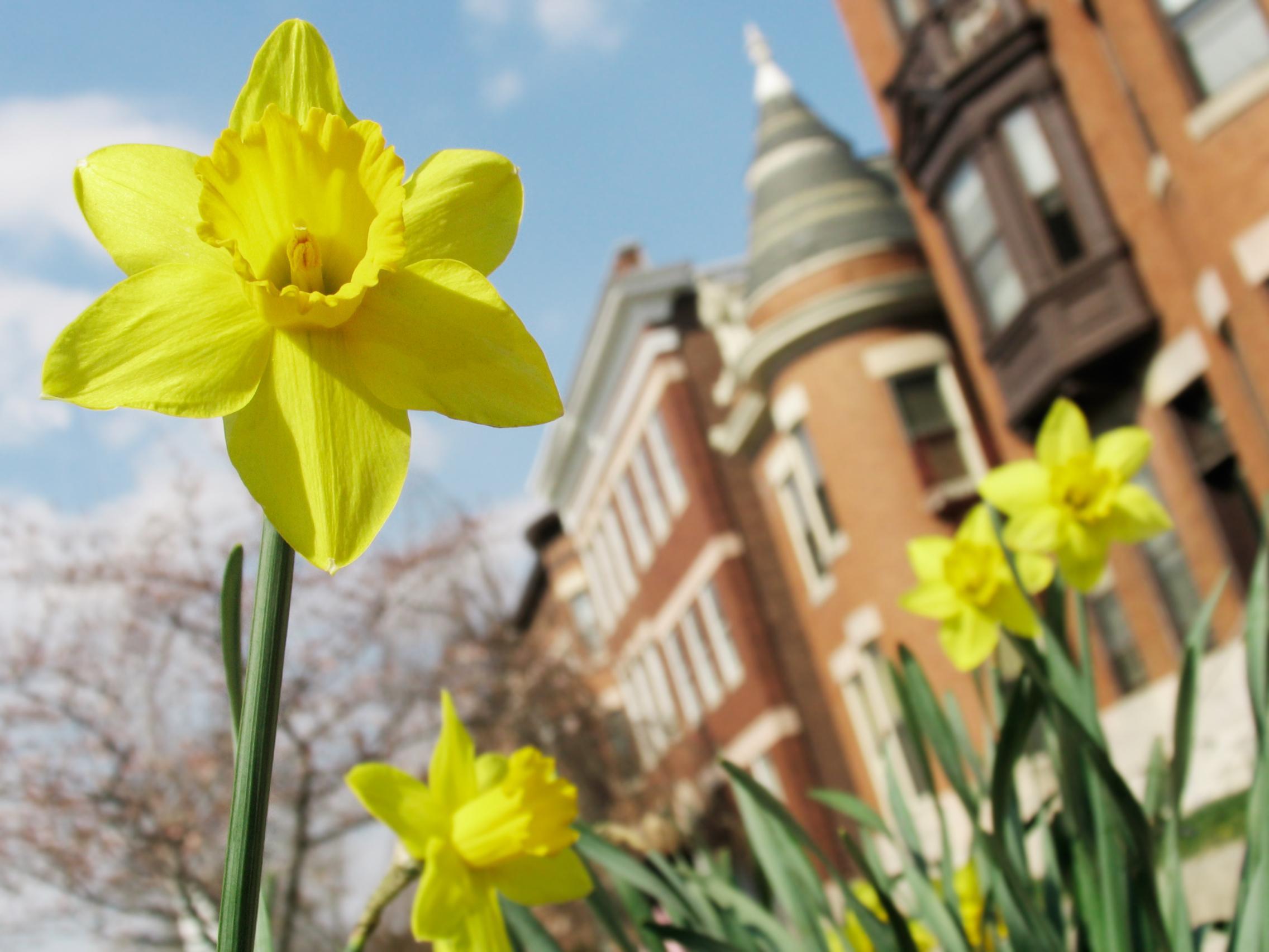 Visit Maryland Spring 2020 - International Law