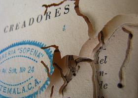 New Writing from Guatemala