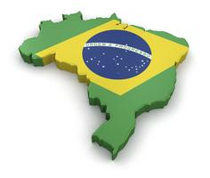 Brazil: What's Next? An international business...