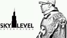SKYLEVEL ENTERPRISE  logo