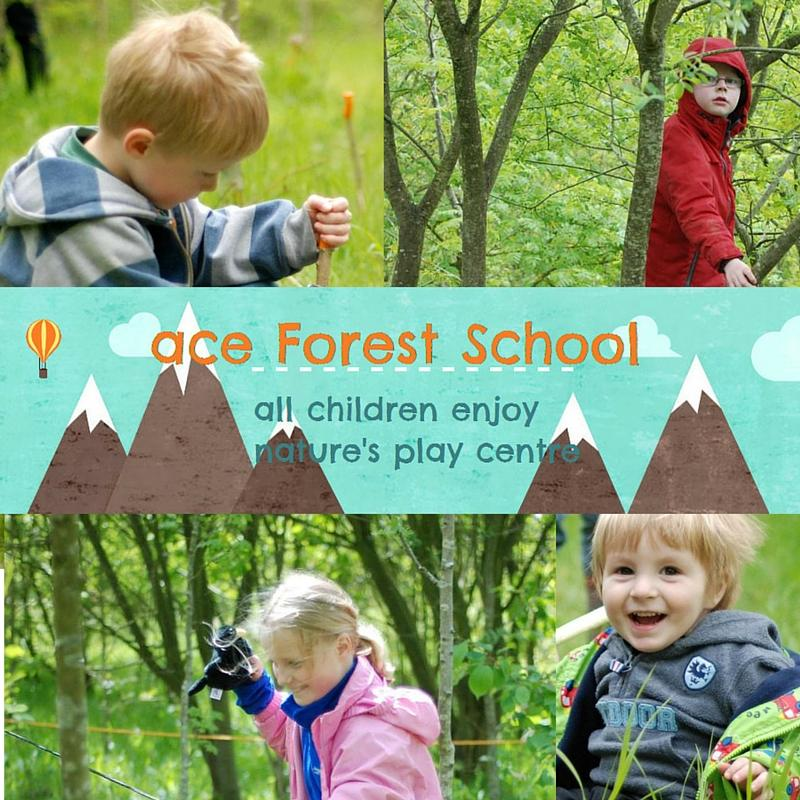 Forest Toddler Play group (Wednesday)