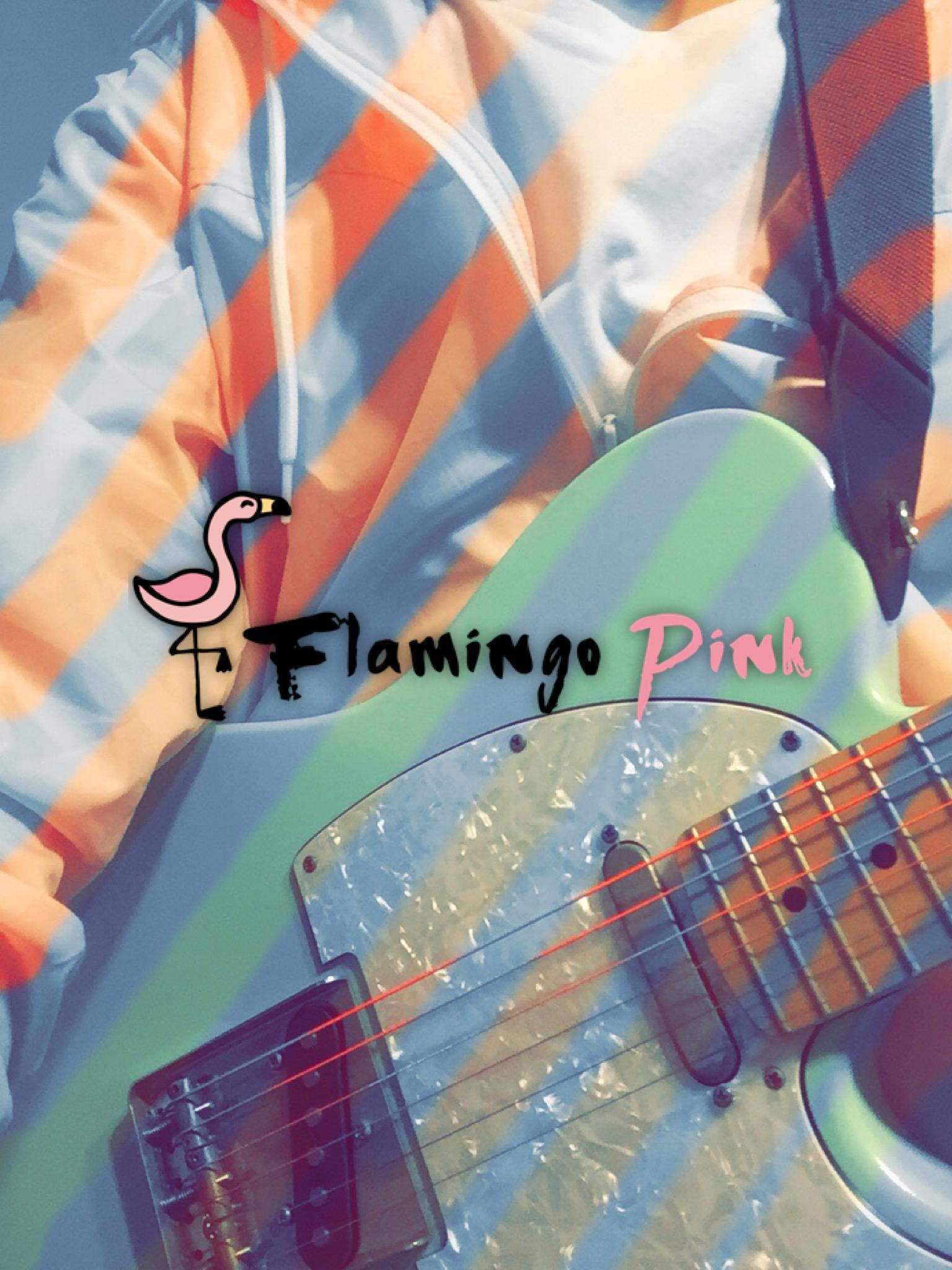 Flamingo Pink LIVE @ The Roxy Encinitas