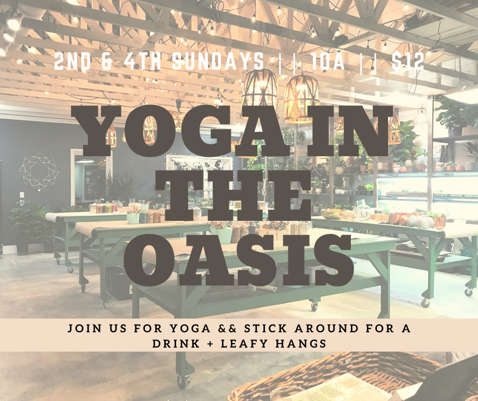 Yoga in the Oasis