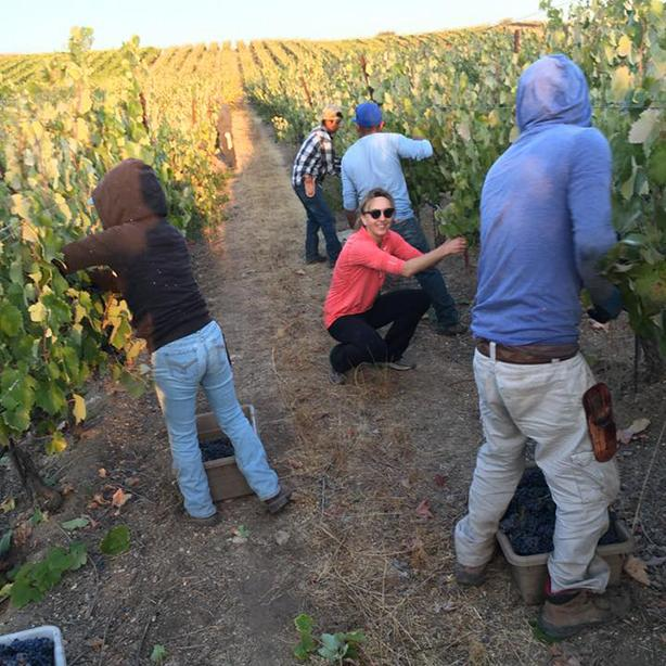 Wine Event:  League of Rogues Winery