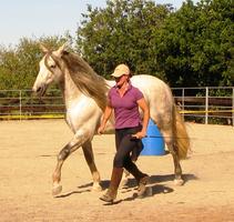Instinctive Horsemanship - Mastering the 7 Step...