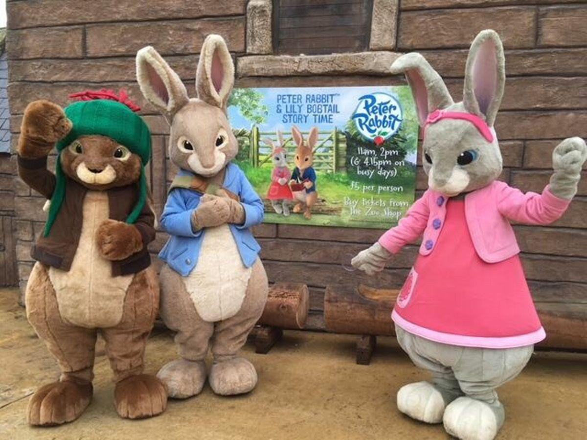 Peter Rabbit & Friends Easter Party - Play, Eat, Meet & Party!