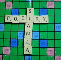 Poetry Stanza Group November 2014