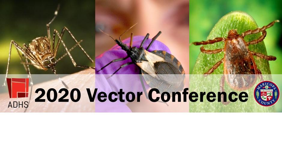 2020 Vector Conference