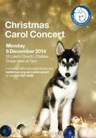 Battersea Dogs & Cats Home Carol Concert