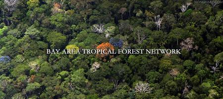 Nov 2014 BATFN: Conserving the Forests of Ethiopia