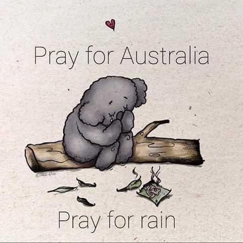 Paint with a Purpose for Austrailia