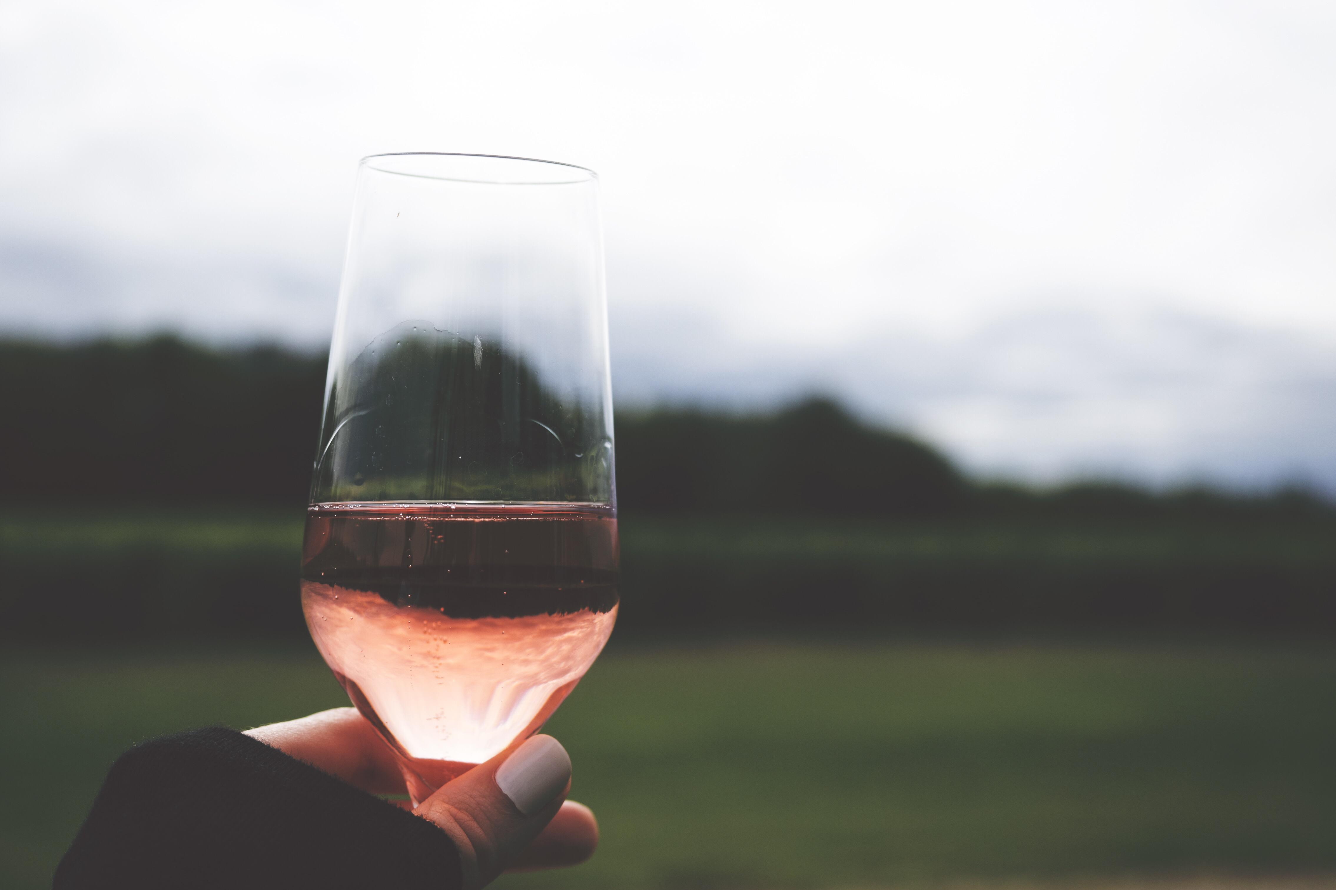 Rosé Wine Mansion Adventure