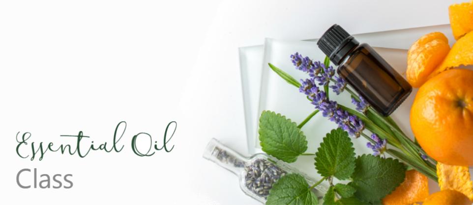 Wellness Wednesday: Exploring Essential Oils