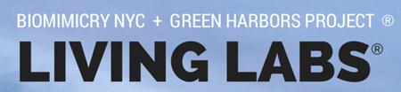 Biomimicry + Urban Green Harbors Workshop