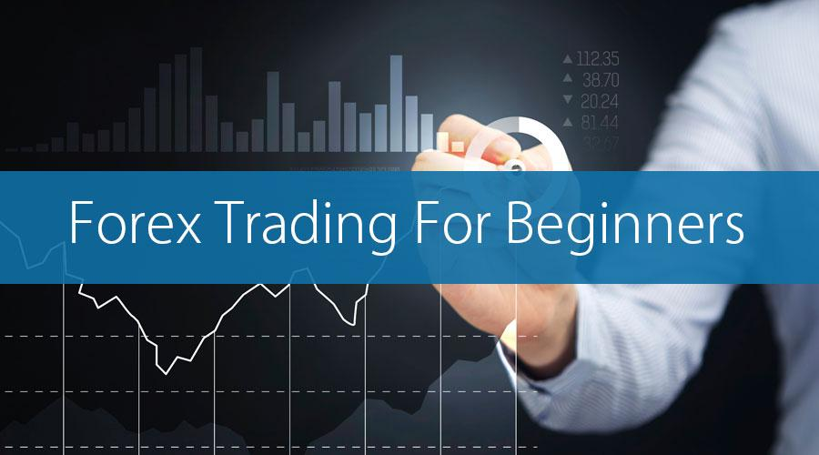 1-2-1 Forex Workshop for Beginners - Sheffield