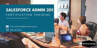 Salesforce Admin 201 Certification Training in...