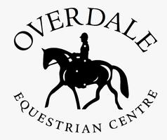 Equestrian Simulator Course - for Riders of All...