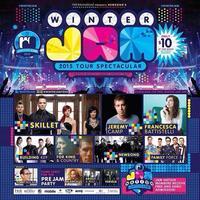 Winter Jam Tour Spectacular 2015-Chicago Volunteers