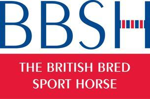 The BBSH Stallion Event 2013