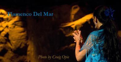 Flamenco Del Mar
