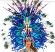 Trinidad Carnival 2015 All-Inclusive