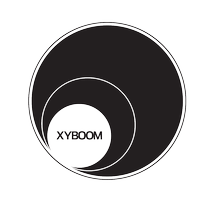 An XYBOOM Story Night | Unconventional Paths to...