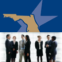 Defense Professional Networking - Tampa Jan 2013