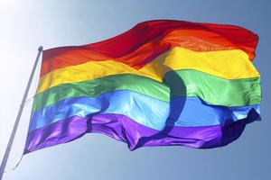 Celebrating LGBT History Month - Lunch & Learn