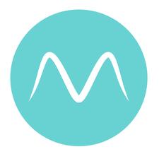 Flying Masters logo