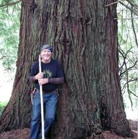 Jeff Helmer Memorial Walk at Byrne-Milliron Forest