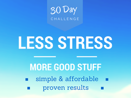 30 Day Less Stress More Good Stuff Challenge  On-line...