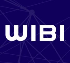 WibiData logo
