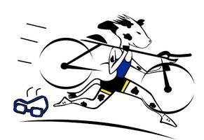 UC Davis Sprint Triathlon 2013