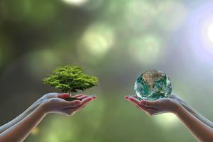 Sustainability 101: Youth Leadership Training