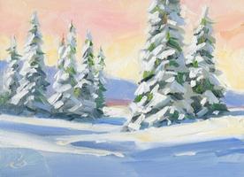 Dupont Class: Winter WonderLandscape