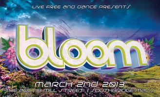 Bloom || 4 Room Spring Massive