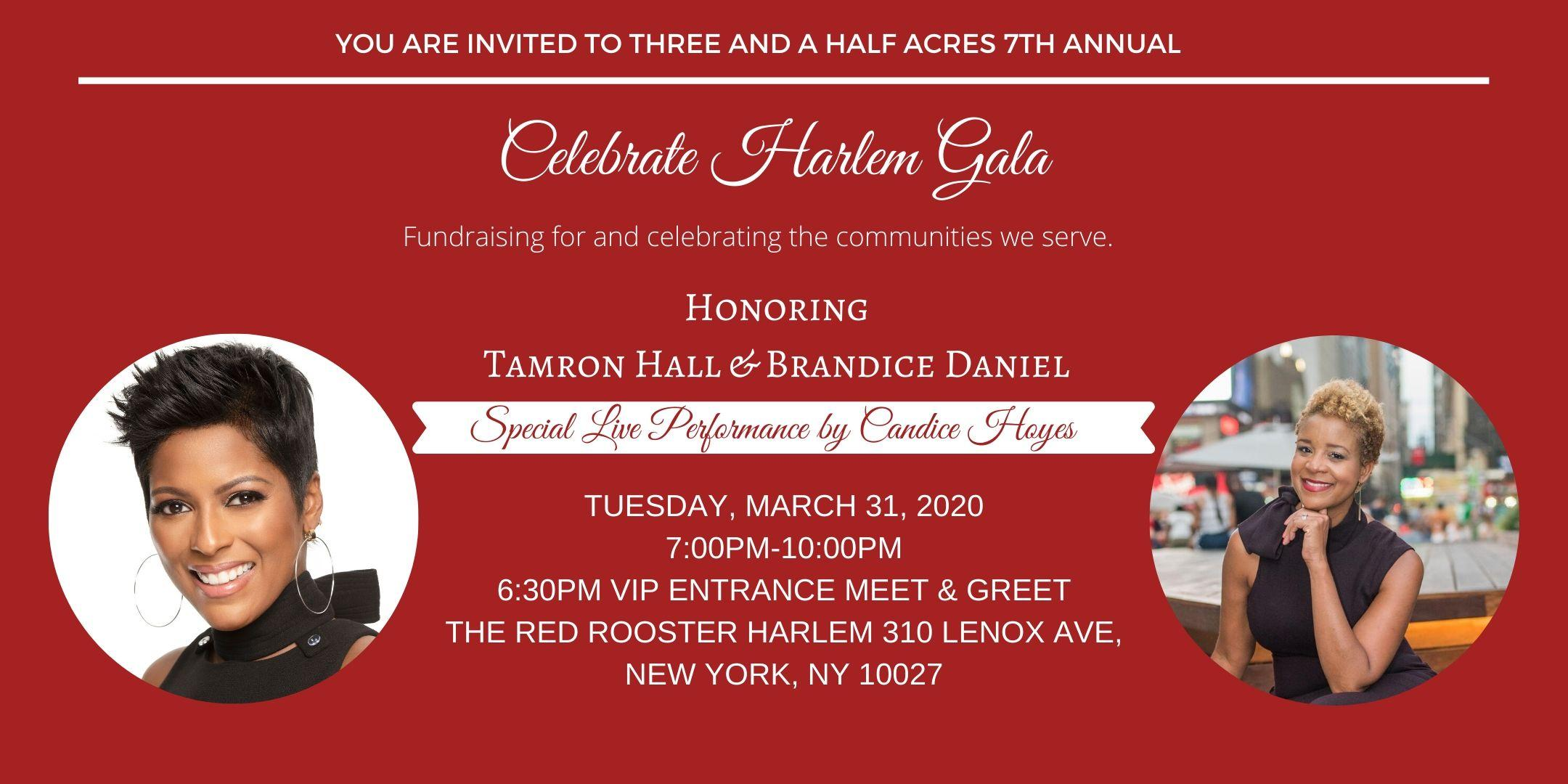 Three and a Half Acres 7th Annual Celebrate Harlem Gala
