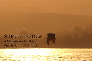 SO MUCH TO LOSE: Wellington Art Exhibition