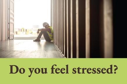 StressSmart- How Mindfulness Reduces Chronic Stress and Builds Resiliency
