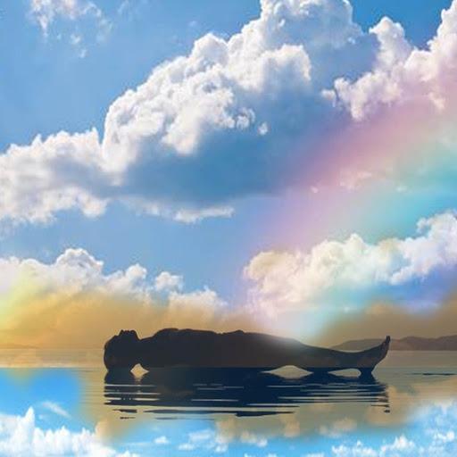 Yoga Nidra Guided Sleep Meditation with Sara