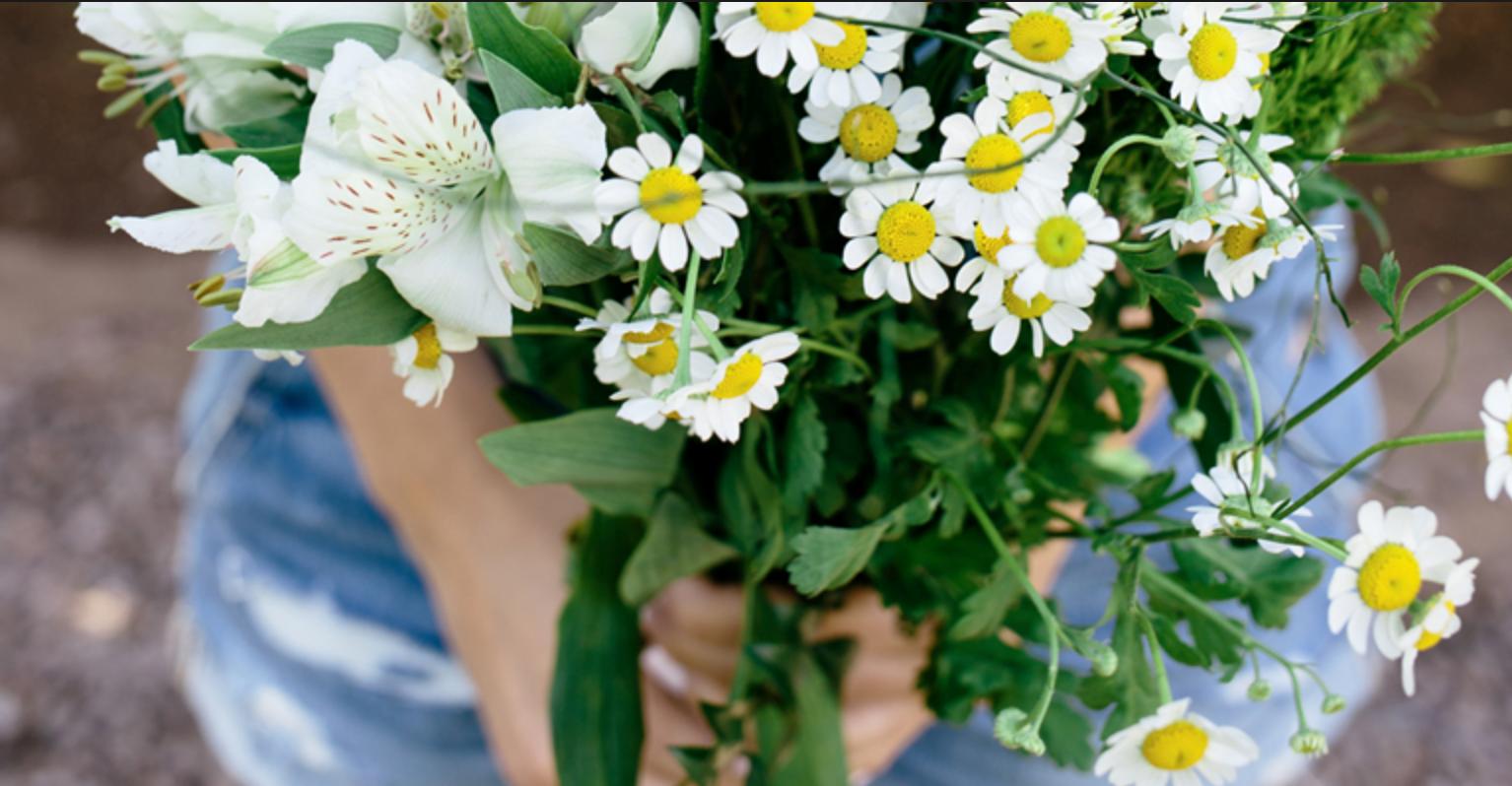SPRING Self Care in Season Mini-Retreat for Women