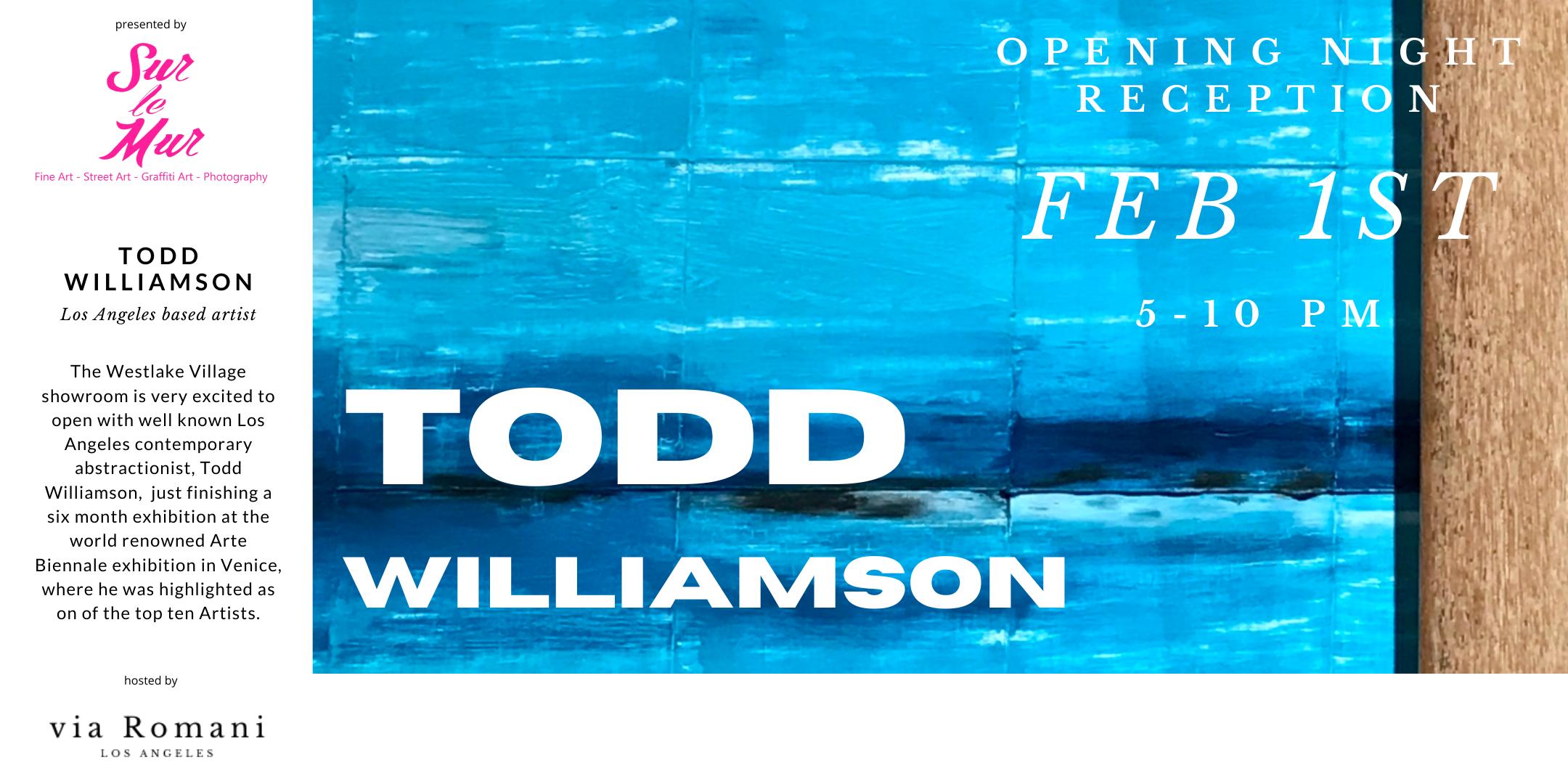 TODD WILLIAMSON | Art Installation