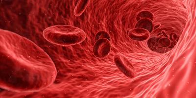 POSTPONED - Anticoagulation Foundation Training for...